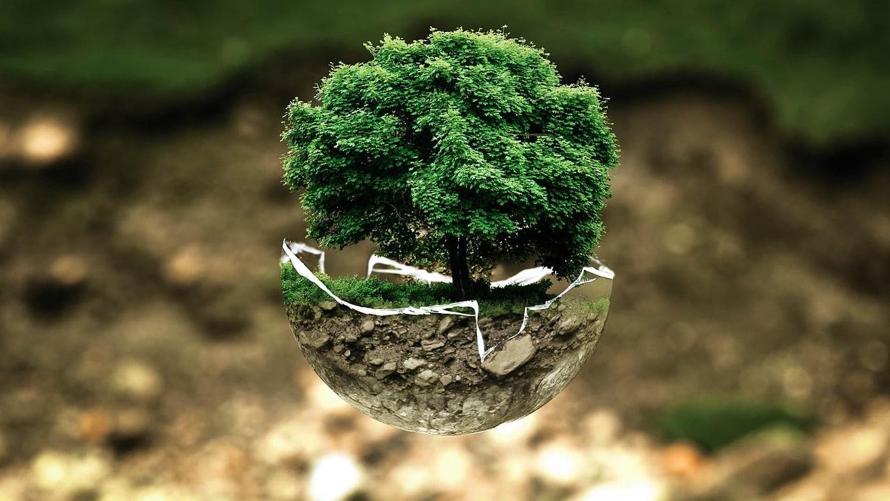 spare penger på å være miljøbevisst